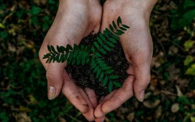 Devenez riche en sauvant la planète