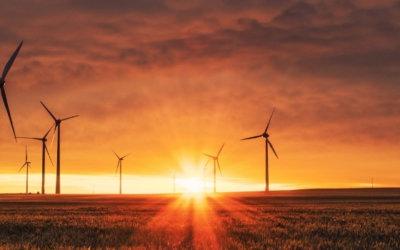 L'AQZD lance son ça va bien aller à l'environnement